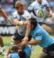 Waratahs vs Force: Super Rugby live scores, blog