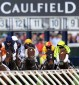 Track bias a downer on Caulfield Cup day