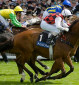 Royal Ascot and what it means for us: Lady Aurelia, Highland Reel, and Big Orange