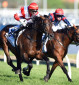 Memsie Stakes: Group 1 preview and tips